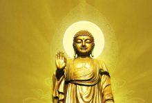 佛教上品上位大圣德研究会从无明诽谤到真实忏悔、弘扬第三世多杰羌佛正法-第三世多杰羌佛正法