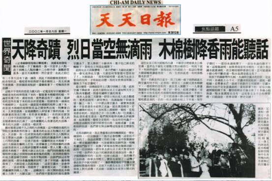 天降奇迹 烈日当空无滴语 木棉树降香雨能听话(2002 /1 / 28 天天日 报)