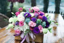 一颗充满善意的心灵才是春天最美的花朵-第三世多杰羌佛正法