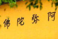【佛门观察】为何有人不求解脱而学佛,也会有受用?-第三世多杰羌佛正法